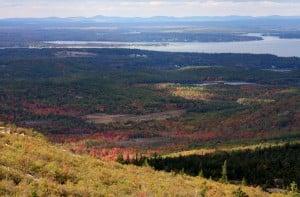 Acadia National Park (31)