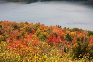 Acadia National Park (37)