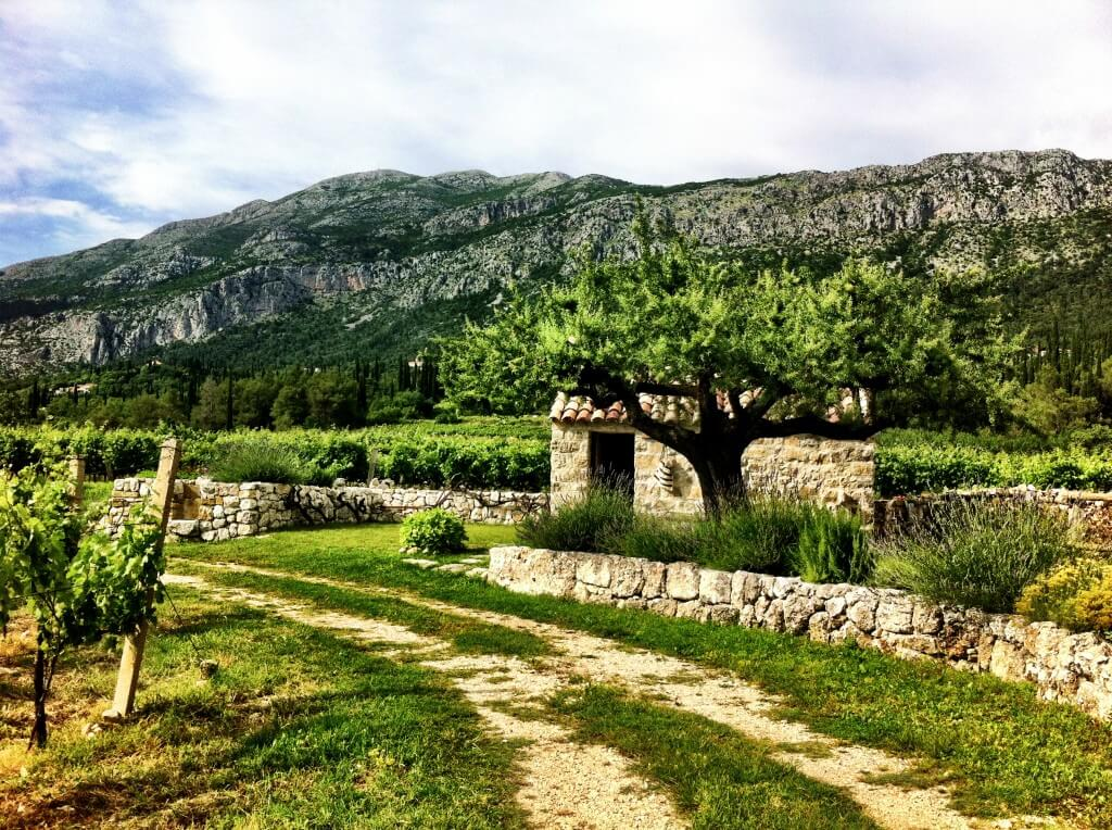 Views from the Wine Train in Dubrovnik.  Credit:  Rachelle Lucas