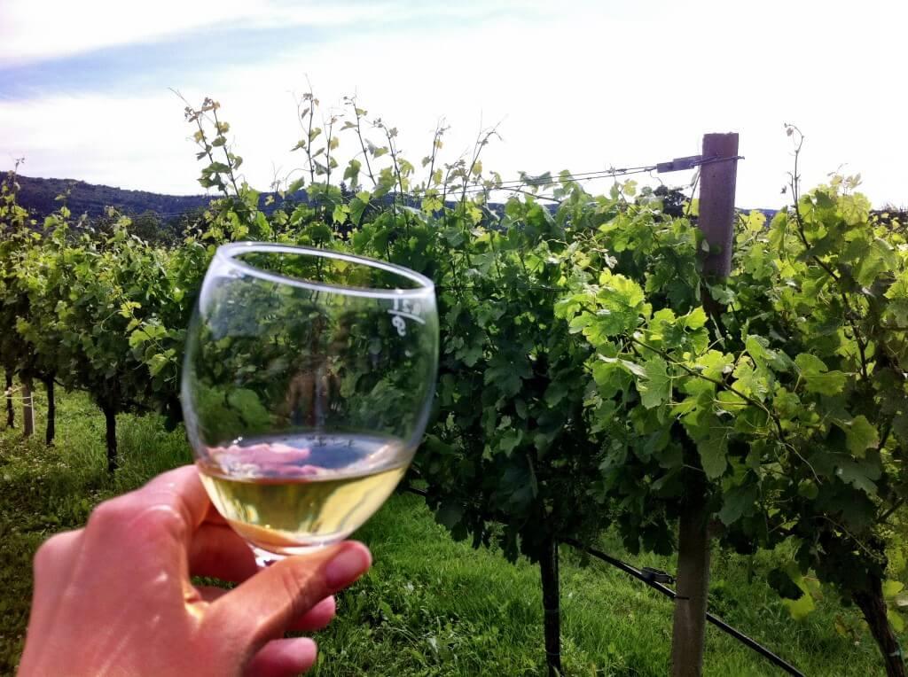 Wine Destinations-9