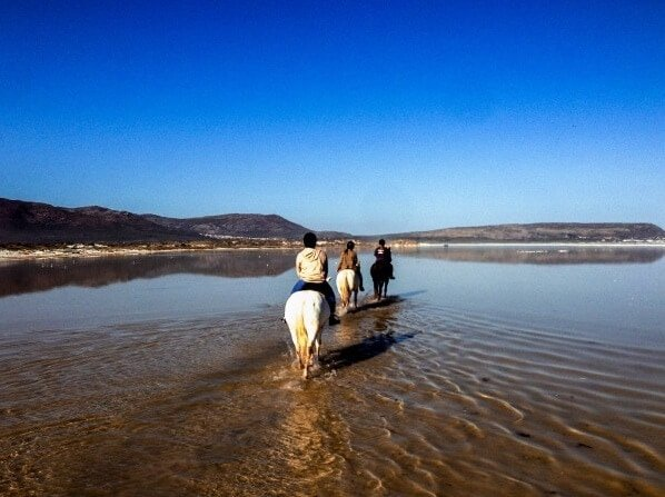 Style Hi Club Horseback Riding In South Africa