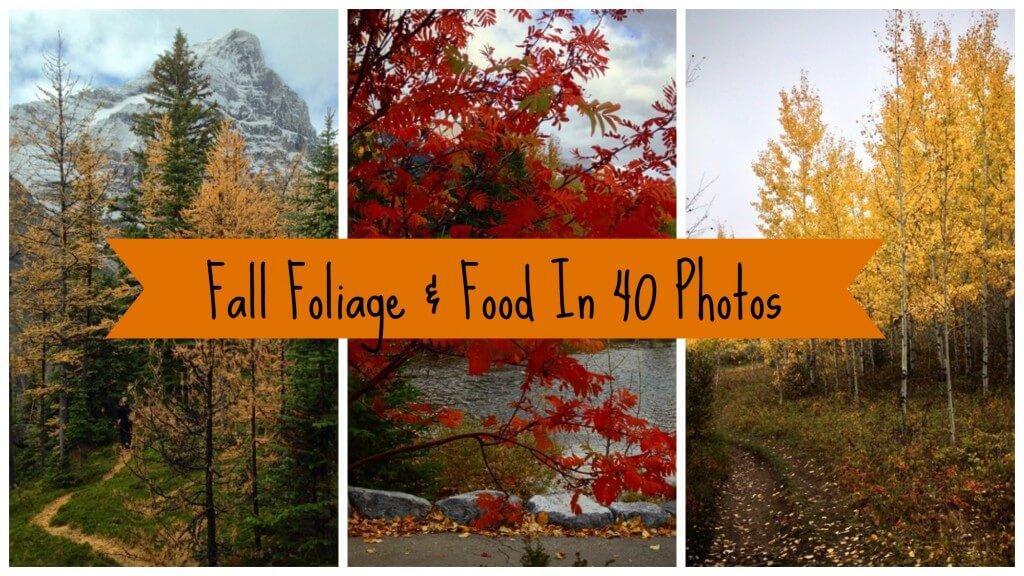 Fall Foliage And Food In Alberta
