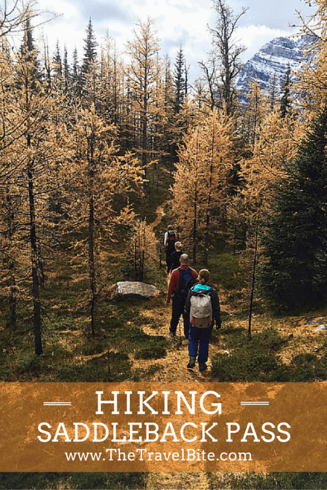 Hiking Saddleback Pass