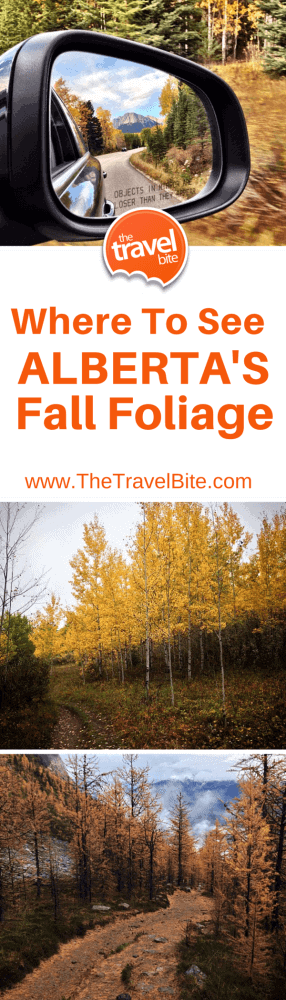 Where to see Alberta's Fall Foliage