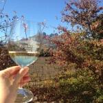 The Travel Bite Podcast Episode 2 - Ken Forrester Wine