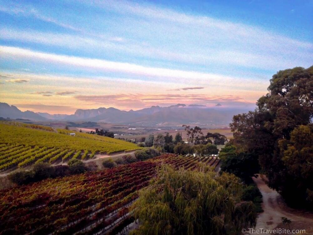 Stellenbosch_TheTravelBite_RachelleLucas-8