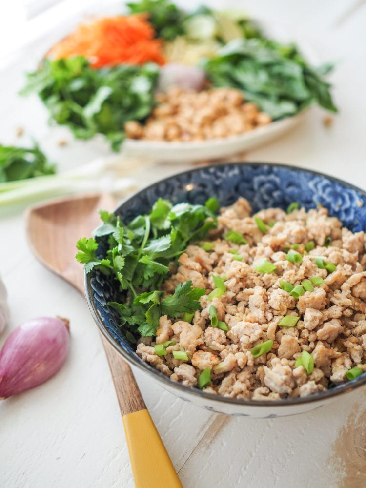 Thai Nam Sod: Ginger Lime Ground Pork Recipe