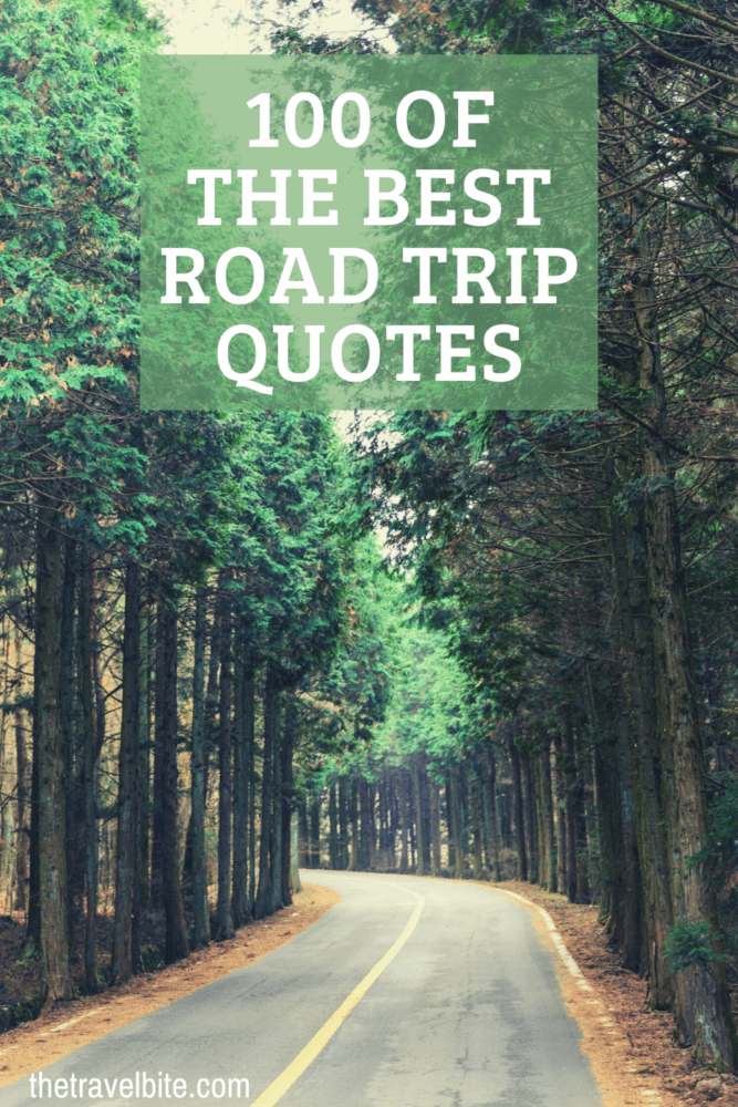 Road Trip Quotes Pin - Road Going Through A Forrest - TheTravelBite.com