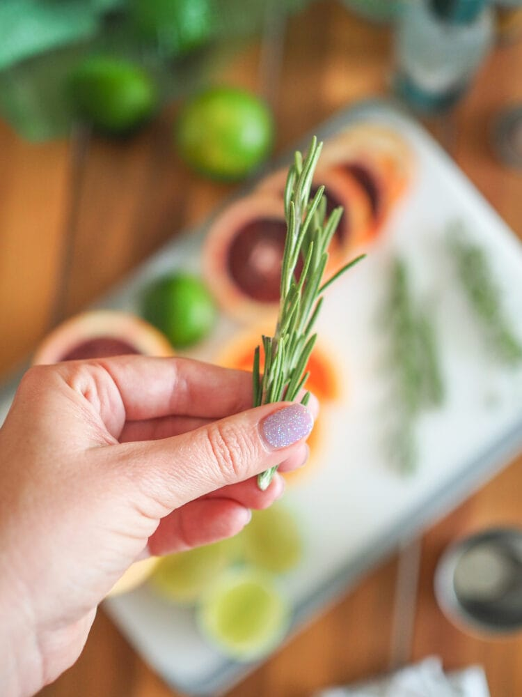 Holding rosemary, a garnish for gin and tonics. With a cutting board in the background showing other garnishes included lime, blood orange, and thyme.