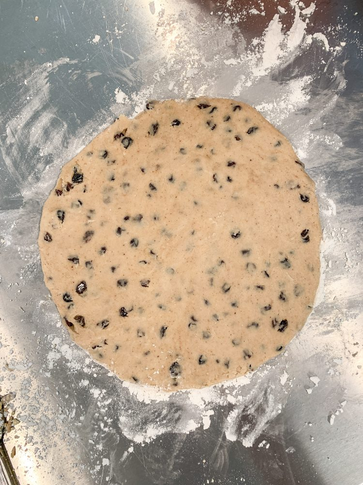 Rolled out Welsh cake dough in a large round shape with currents dotting the dough.